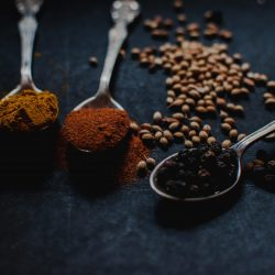 Why our ancestor travelled to other part of world for spices?